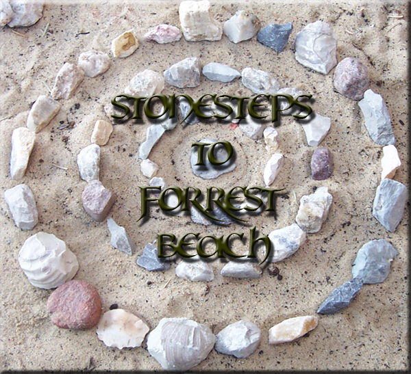 Chipkrieger presents Stonesteps 2 Forrest Beach